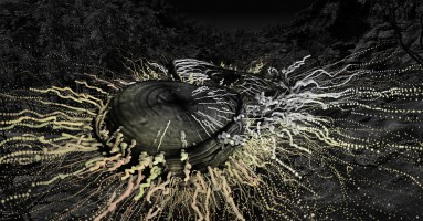 Imagen - 'Jardín salvaje', de Marina Núnez