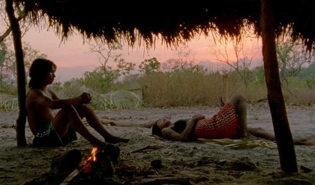 TEA proyecta la película 'El canto de la selva', Premio Especial del Jurado en el Festival de Cannes