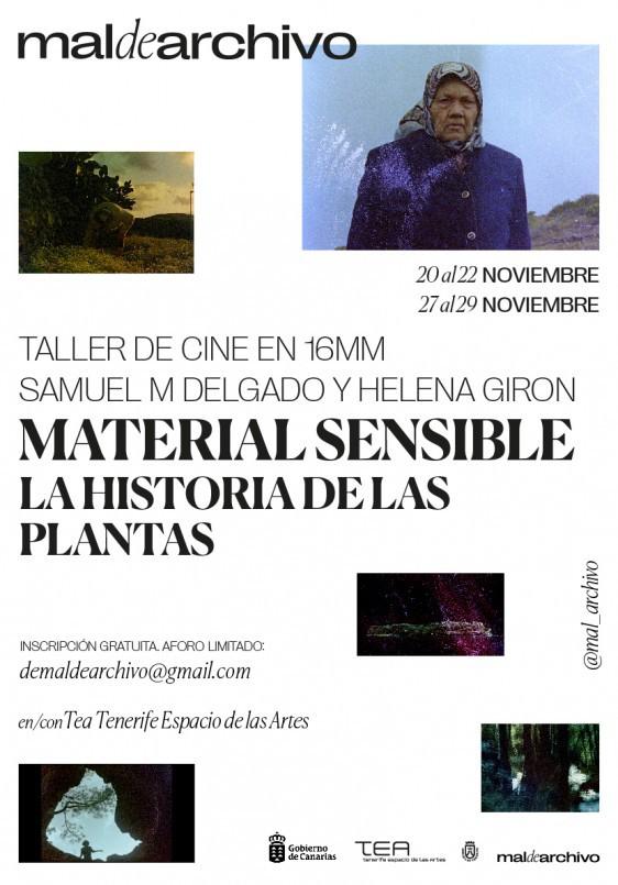 Taller 'La historia de las plantas'