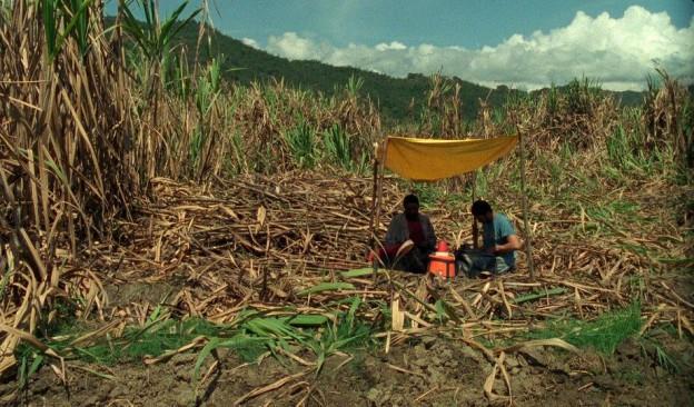 TEA proyecta 'La isla desnuda' y 'Corta' dentro del ciclo de cine vinculado a la exposición 'Estar aquí es todo'