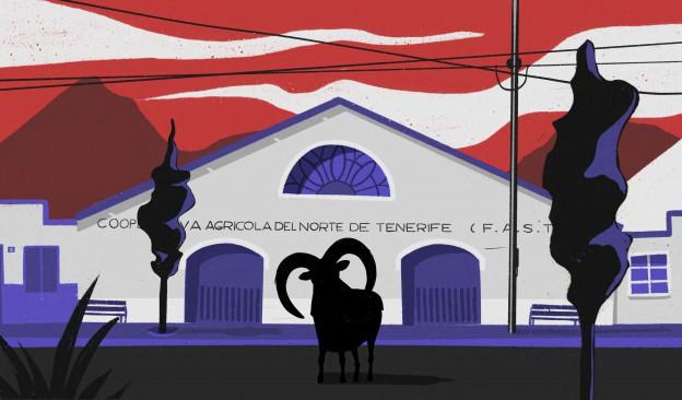 El Cabildo de Tenerife subvenciona con 300.000 euros a 23 proyectos de creación audiovisual